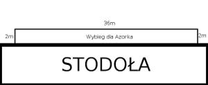 Wybieg dla Azorka 36 na 2 metry