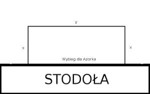 Wybieg dla Azorka x na y metrów