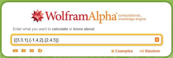 Przykład macierzy wpisanej w wyszukiwarkę Wolfram